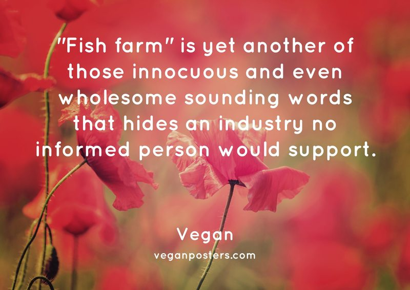"""Fish farm"" is yet another of those innocuous and even wholesome sounding words that hides an industry no informed person would support."