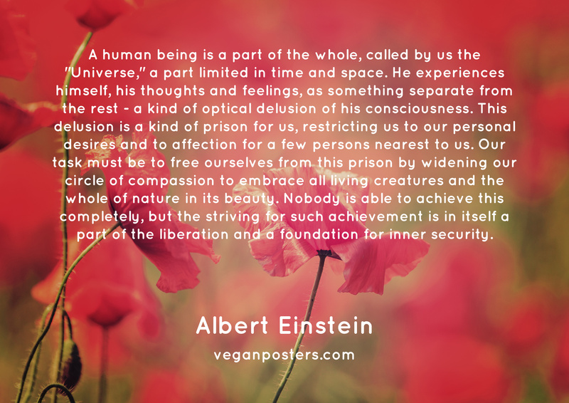 """A human being is a part of the whole, called by us the """"Universe,"""" a part limited in time and space. He experiences himself, his thoughts and feelings, as something separate from the rest - a kind of optical delusion of his consciousness. This delusion is a kind of prison for us, restricting us to our personal desires and to affection for a few persons nearest to us. Our task must be to free ourselves from this prison by widening our circle of compassion to embrace all living creatures and the whole of nature in its beauty. Nobody is able to achieve this completely, but the striving for such achievement is in itself a part of the liberation and a foundation for inner security."""
