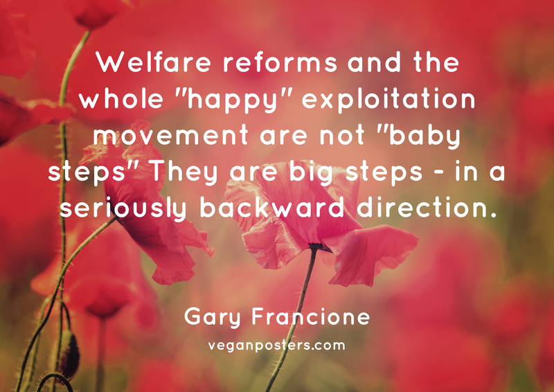 """Welfare reforms and the whole """"happy"""" exploitation movement are not """"baby steps"""" They are big steps - in a seriously backward direction."""