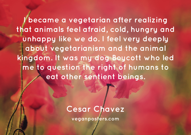 I became a vegetarian after realizing that animals feel afraid, cold, hungry and unhappy like we do. I feel very deeply about vegetarianism and the animal kingdom. It was my dog Boycott who led me to question the right of humans to eat other sentient beings.