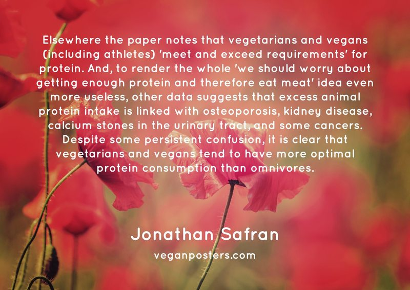 Elsewhere the paper notes that vegetarians and vegans (including athletes) 'meet and exceed requirements' for protein. And, to render the whole 'we should worry about getting enough protein and therefore eat meat' idea even more useless, other data suggests that excess animal protein intake is linked with osteoporosis, kidney disease, calcium stones in the urinary tract, and some cancers. Despite some persistent confusion, it is clear that vegetarians and vegans tend to have more optimal protein consumption than omnivores.