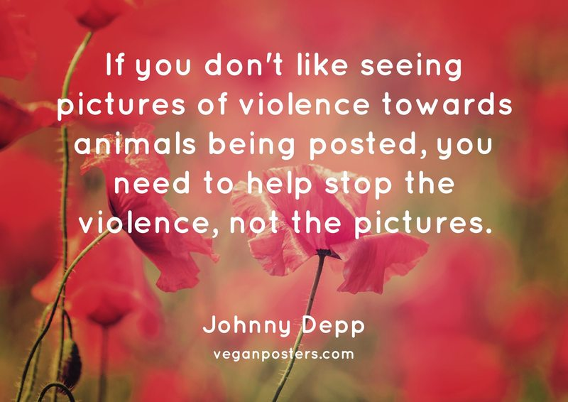 If you don't like seeing pictures of violence towards animals being posted, you need to help stop the violence, not the pictures.