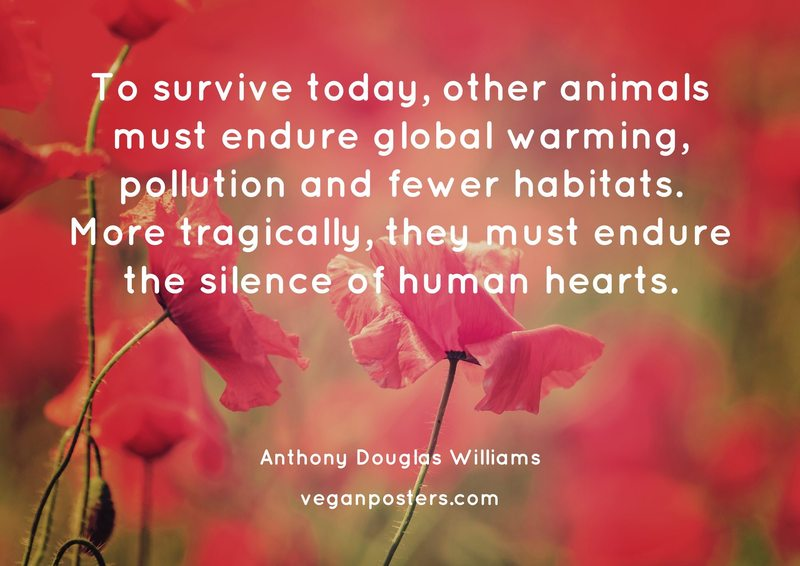 To survive today, other animals must endure global warming, pollution and fewer habitats. More tragically, they must endure the silence of human hearts.