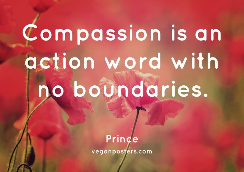 Compassion is an action word with no boundaries.