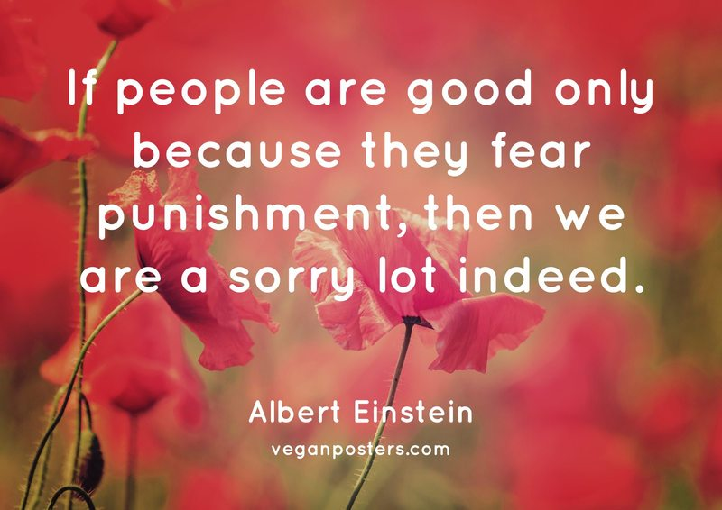 If people are good only because they fear punishment, then we are a sorry lot indeed.