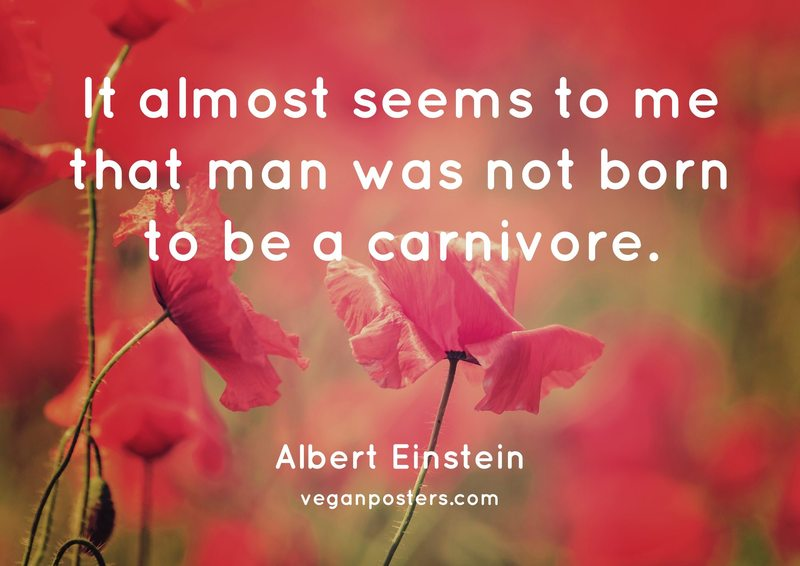 It almost seems to me that man was not born to be a carnivore.