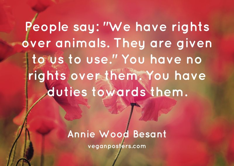 "People say: ""We have rights over animals. They are given to us to use."" You have no rights over them. You have duties towards them."