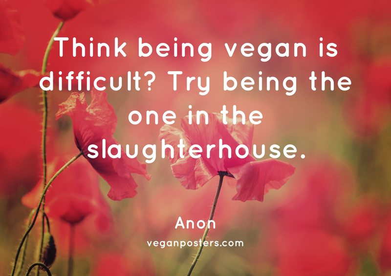 Think being vegan is difficult? Try being the one in the slaughterhouse.