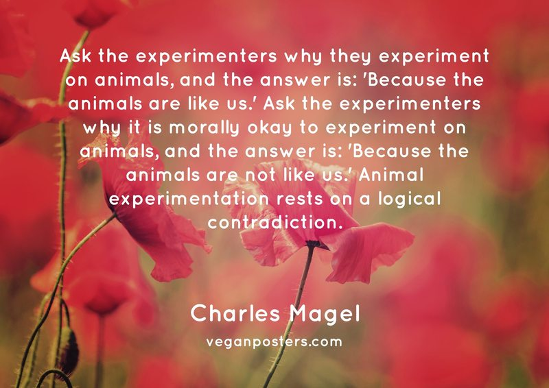 Ask the experimenters why they experiment on animals, and the answer is: 'Because the animals are like us.' Ask the experimenters why it is morally okay to experiment on animals, and the answer is: 'Because the animals are not like us.' Animal experimentation rests on a logical contradiction.