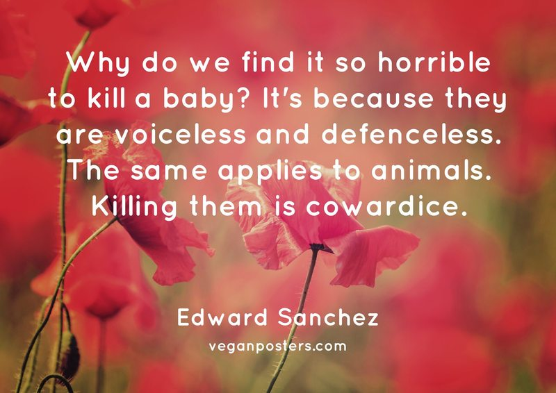 Why do we find it so horrible to kill a baby? It's because they are voiceless and defenceless. The same applies to animals. Killing them is cowardice.