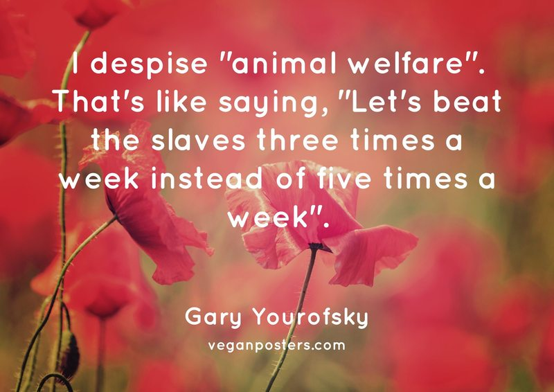 """I despise """"animal welfare"""". That's like saying, """"Let's beat the slaves three times a week instead of five times a week""""."""
