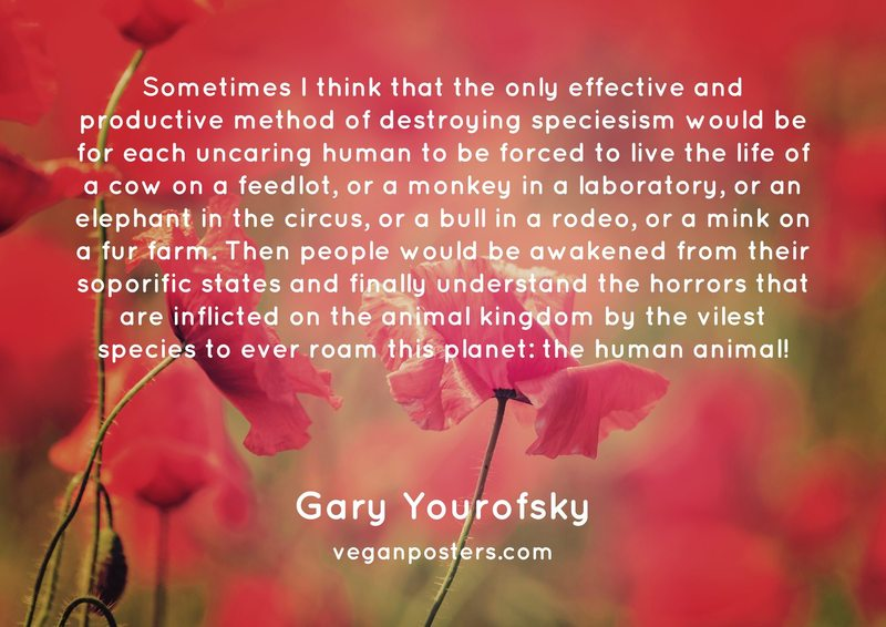 Sometimes I think that the only effective and productive method of destroying speciesism would be for each uncaring human to be forced to live the life of a cow on a feedlot, or a monkey in a laboratory, or an elephant in the circus, or a bull in a rodeo, or a mink on a fur farm. Then people would be awakened from their soporific states and finally understand the horrors that are inflicted on the animal kingdom by the vilest species to ever roam this planet: the human animal!