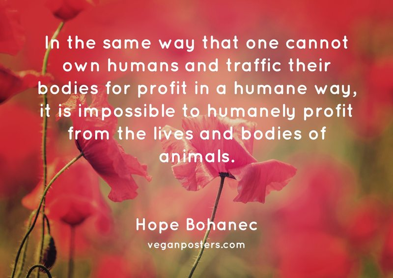 In the same way that one cannot own humans and traffic their bodies for profit in a humane way, it is impossible to humanely profit from the lives and bodies of animals.