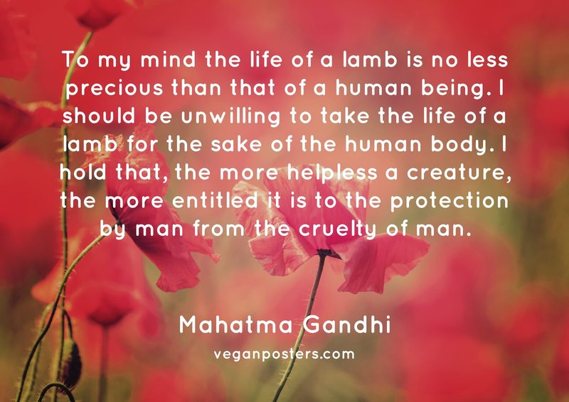To my mind the life of a lamb is no less precious than that of a human being. I should be unwilling to take the life of a lamb for the sake of the human body. I hold that, the more helpless a creature, the more entitled it is to the protection by man from the cruelty of man.