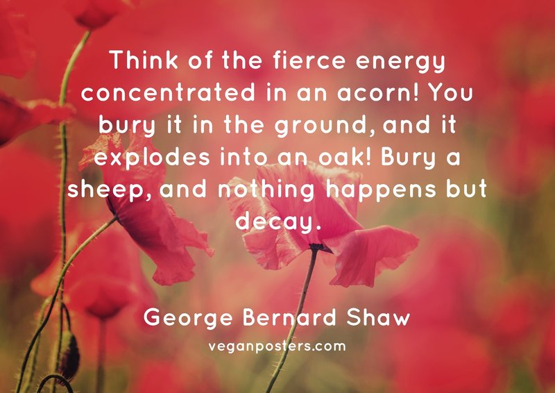 Think of the fierce energy concentrated in an acorn! You bury it in the ground, and it explodes into an oak! Bury a sheep, and nothing happens but decay.