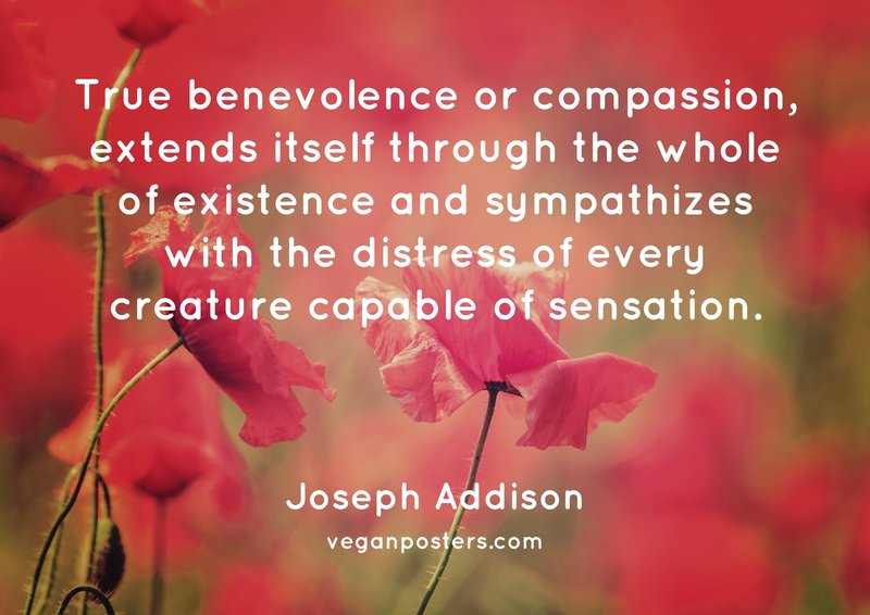 True benevolence or compassion, extends itself through the whole of existence and sympathizes with the distress of every creature capable of sensation.
