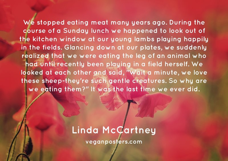 "We stopped eating meat many years ago. During the course of a Sunday lunch we happened to look out of the kitchen window at our young lambs playing happily in the fields. Glancing down at our plates, we suddenly realized that we were eating the leg of an animal who had until recently been playing in a field herself. We looked at each other and said, ""Wait a minute, we love these sheep-they're such gentle creatures. So why are we eating them?"" It was the last time we ever did."