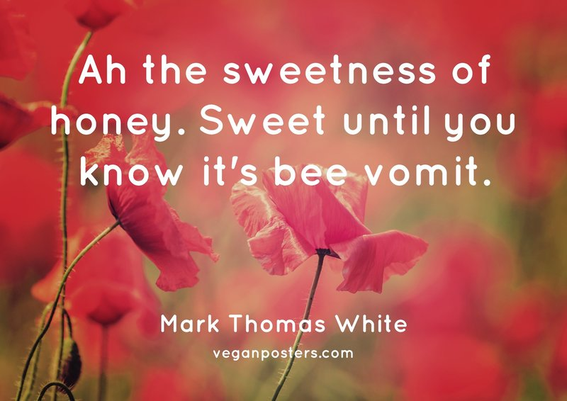 Ah the sweetness of honey. Sweet until you know it's bee vomit.
