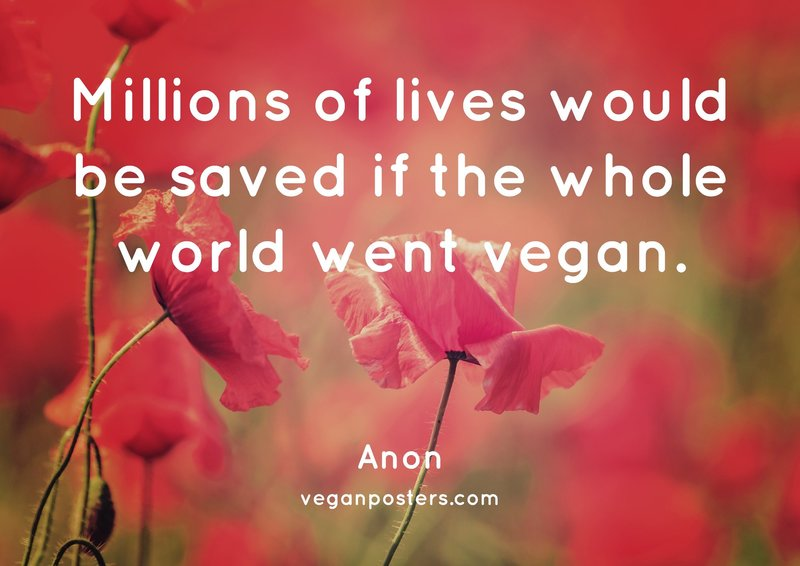 Millions of lives would be saved if the whole world went vegan.