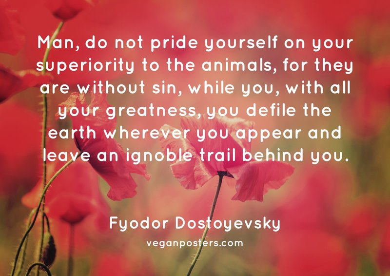 Man, do not pride yourself on your superiority to the animals, for they are without sin, while you, with all your greatness, you defile the earth wherever you appear and leave an ignoble trail behind you.