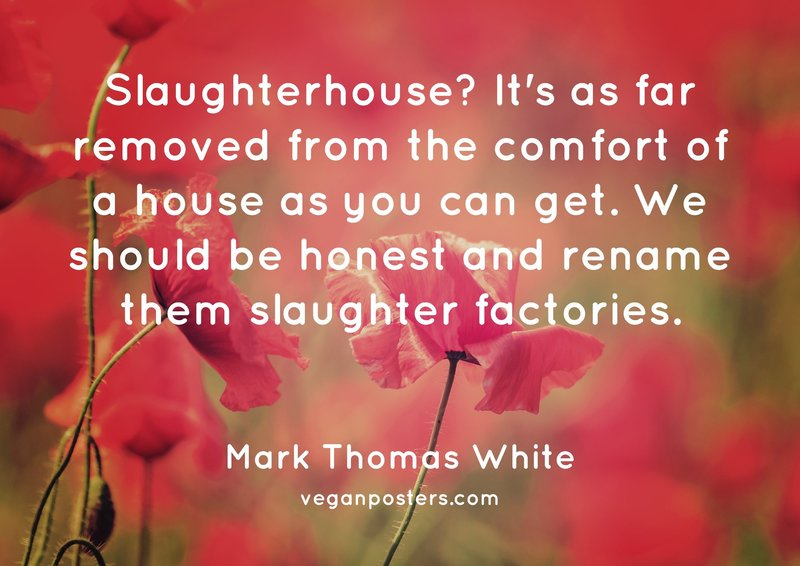 Slaughterhouse? It's as far removed from the comfort of a house as you can get. We should be honest and rename them slaughter factories.