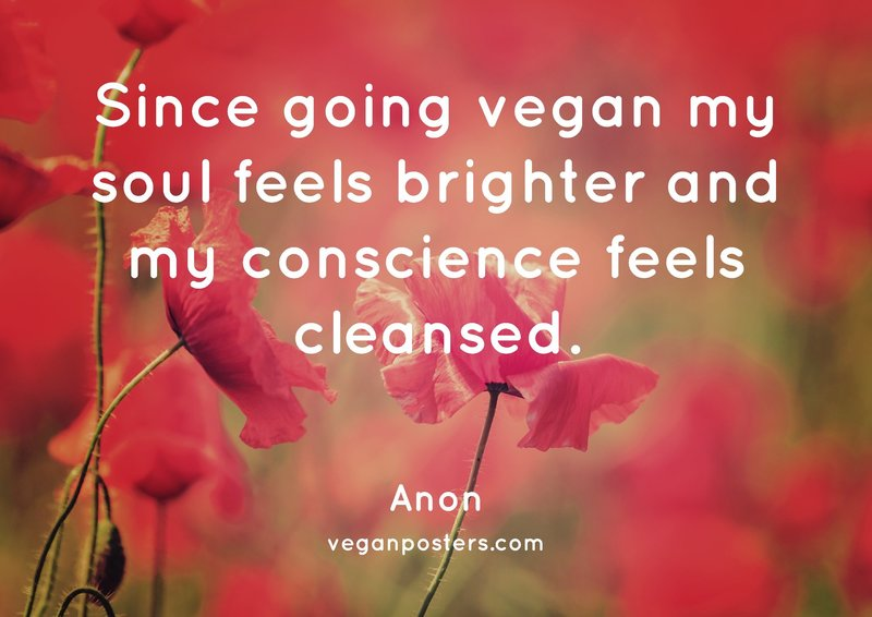 Since going vegan my soul feels brighter and my conscience feels cleansed.