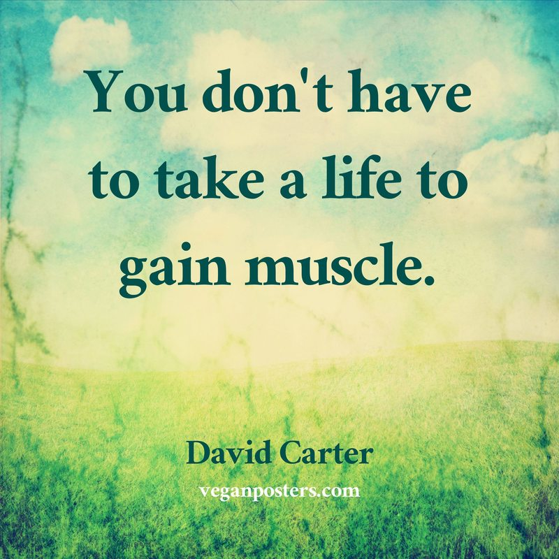 You don't have to take a life to gain muscle.
