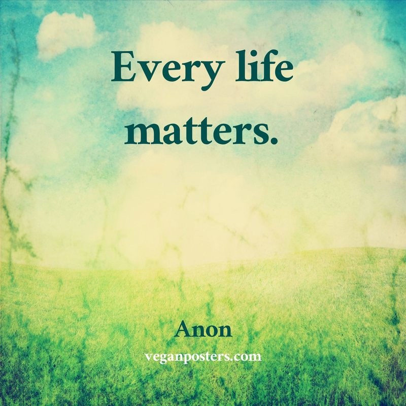 Every life matters.