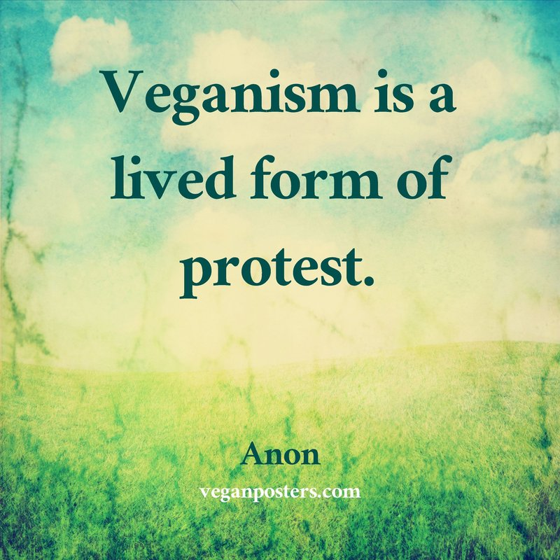 Veganism is a lived form of protest.