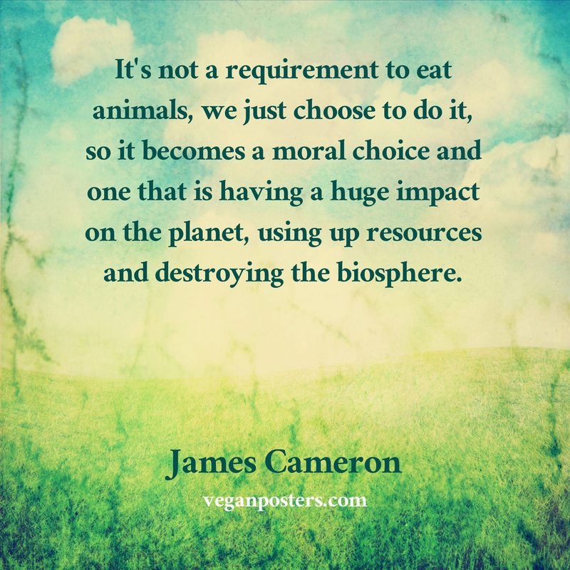 It's not a requirement to eat animals, we just choose to do it, so it becomes a moral choice and one that is having a huge impact on the planet, using up resources and destroying the biosphere.