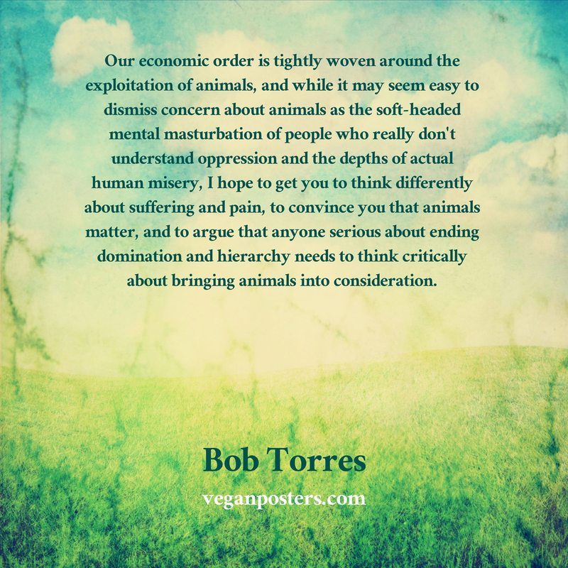 Our economic order is tightly woven around the exploitation of animals, and while it may seem easy to dismiss concern about animals as the soft-headed mental masturbation of people who really don't understand oppression and the depths of actual human misery, I hope to get you to think differently about suffering and pain, to convince you that animals matter, and to argue that anyone serious about ending domination and hierarchy needs to think critically about bringing animals into consideration.