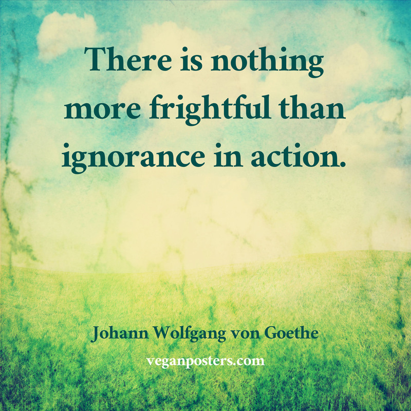 There is nothing more frightful than ignorance in action.