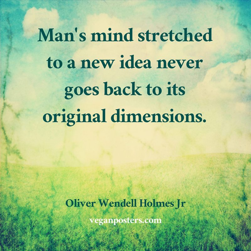 Man's mind stretched to a new idea never goes back to its original dimensions.