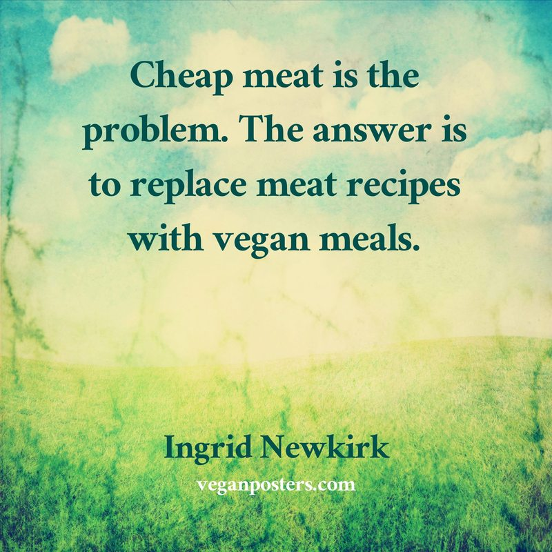 Cheap meat is the problem. The answer is to replace meat recipes with vegan meals.