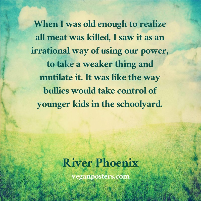 When I was old enough to realize all meat was killed, I saw it as an irrational way of using our power, to take a weaker thing and mutilate it. It was like the way bullies would take control of younger kids in the schoolyard.