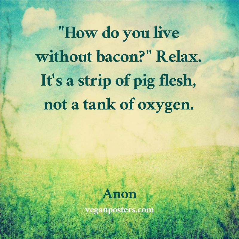 """""""How do you live without bacon?"""" Relax. It's a strip of pig flesh, not a tank of oxygen."""
