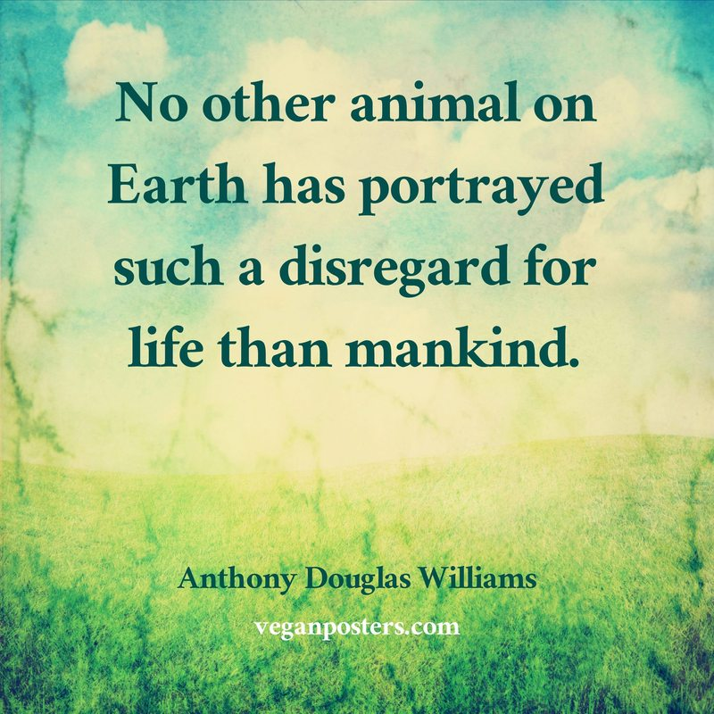 No other animal on Earth has portrayed such a disregard for life than mankind.