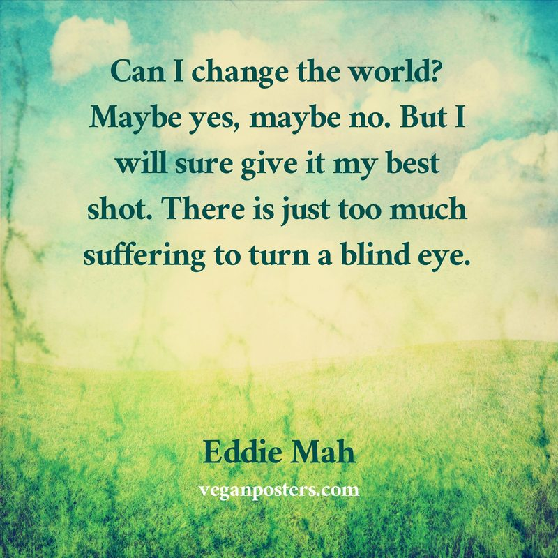 Can I change the world? Maybe yes, maybe no. But I will sure give it my best shot. There is just too much suffering to turn a blind eye.