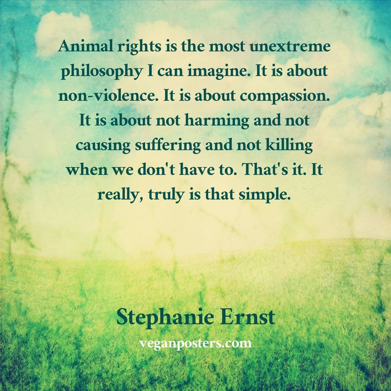 Animal rights is the most unextreme philosophy I can imagine. It is about non-violence. It is about compassion. It is about not harming and not causing suffering and not killing when we don't have to. That's it. It really, truly is that simple.