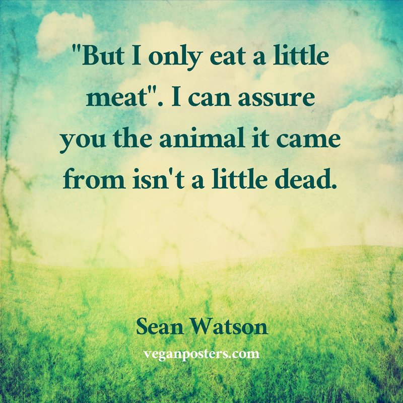 """But I only eat a little meat"". I can assure you the animal it came from isn't a little dead."