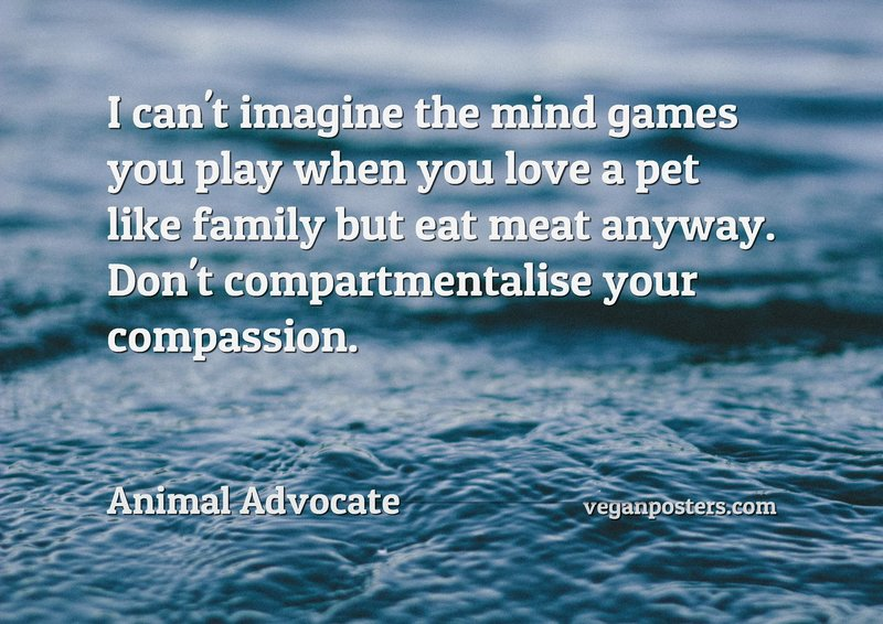 I can't imagine the mind games you play when you love a pet like family but eat meat anyway. Don't compartmentalise your compassion.