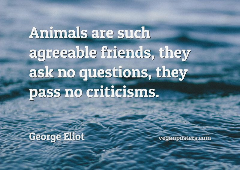 Animals are such agreeable friends, they ask no questions, they pass no criticisms.