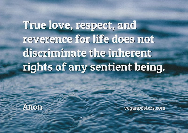 True love, respect, and reverence for life does not discriminate the inherent rights of any sentient being.