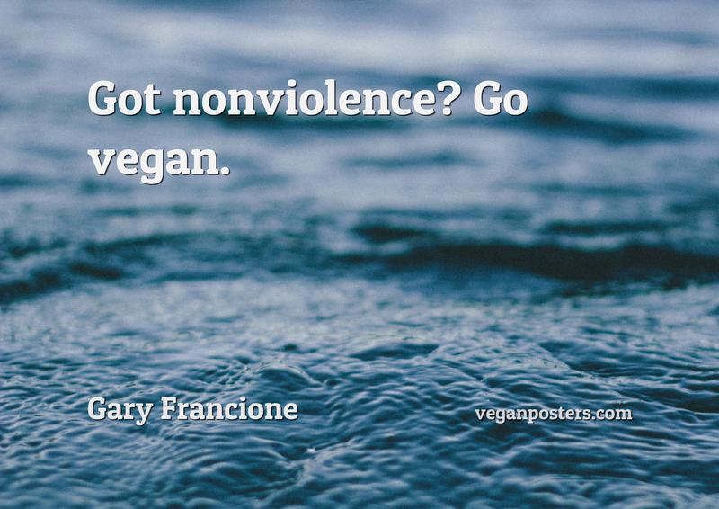 Got nonviolence? Go vegan.