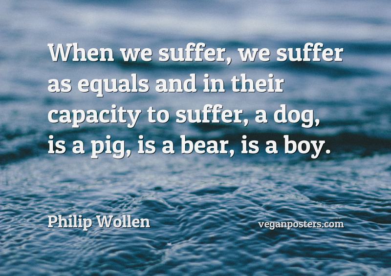 When we suffer, we suffer as equals and in their capacity to suffer, a dog, is a pig, is a bear, is a boy.