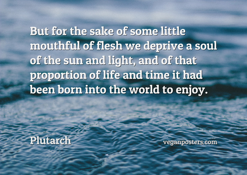 But for the sake of some little mouthful of flesh we deprive a soul of the sun and light, and of that proportion of life and time it had been born into the world to enjoy.