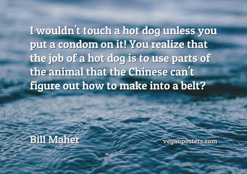 I wouldn't touch a hot dog unless you put a condom on it! You realize that the job of a hot dog is to use parts of the animal that the Chinese can't figure out how to make into a belt?
