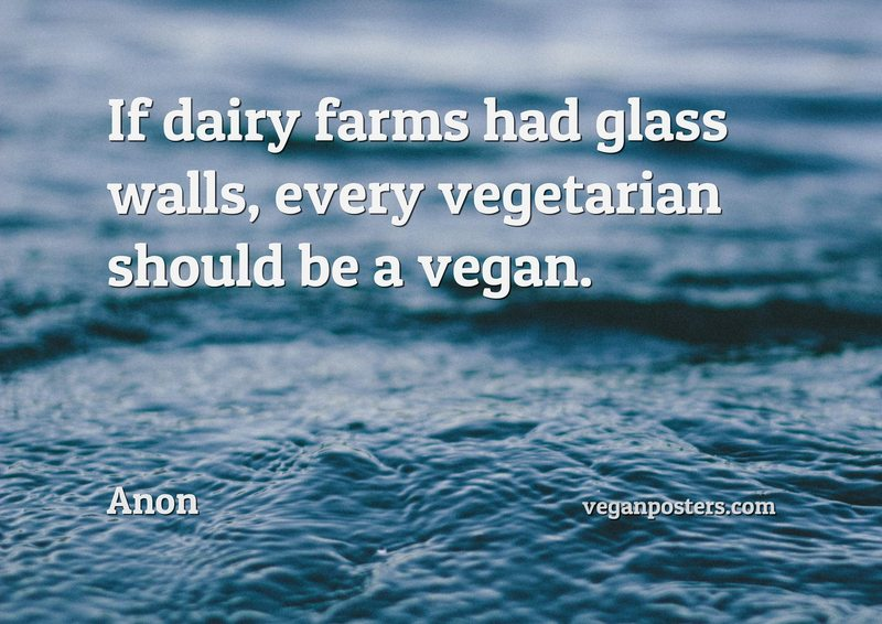 If dairy farms had glass walls, every vegetarian should be a vegan.