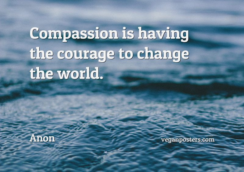 Compassion is having the courage to change the world.