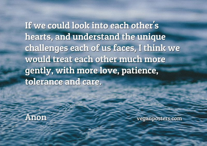 If we could look into each other's hearts, and understand the unique challenges each of us faces, I think we would treat each other much more gently, with more love, patience, tolerance and care.